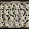 Gardenia (24 blooms/box)