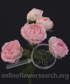 Spray Rose Blushing Bride