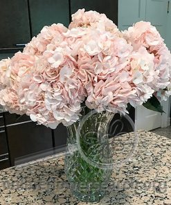 Hydrangea Blush (Light Pink)